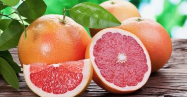 grow grapefruits from seed e1621416743664